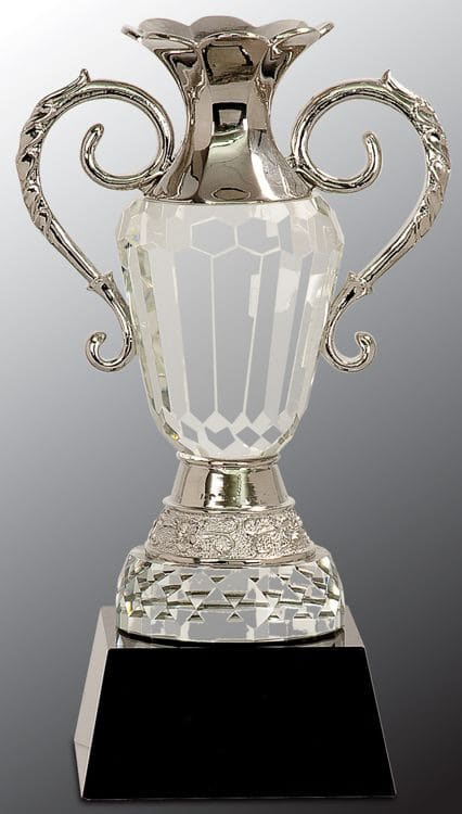 CRY062L Trophy Cup-blank